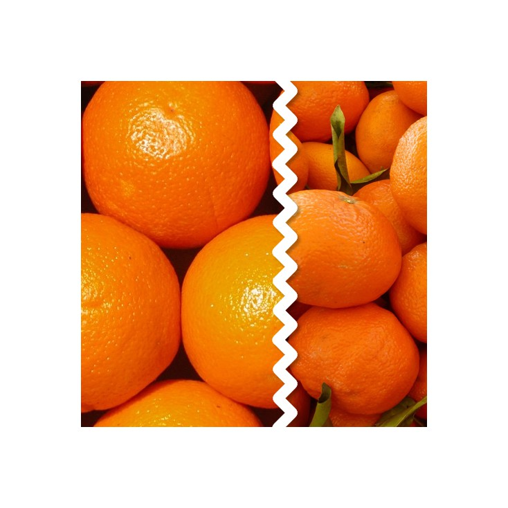 Naranjas y Mandarina MIXTA