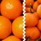 Naranjas y Mandarina 16 kg MIXTA