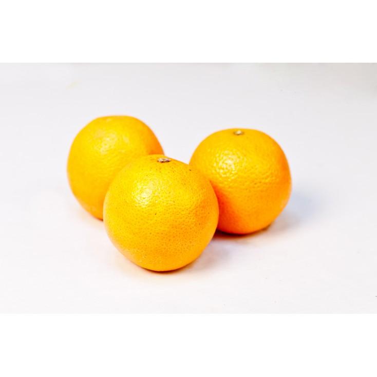 Naranja de Mesa